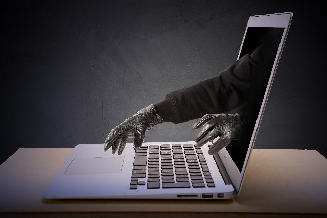 フィッシング詐欺の主な被害内容